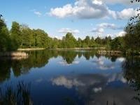 Salg af liebhaverejendomme i Nordsjælland og Allerød
